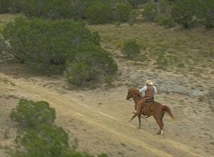 horse_gallop